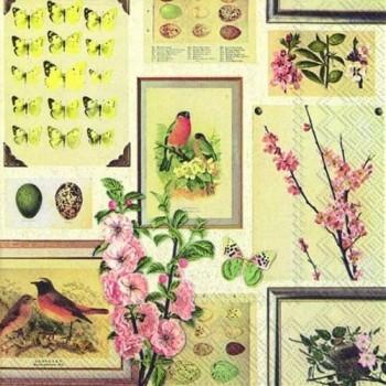 Χαρτοπετσέτα για Decoupage, Botanical Spring / L730900