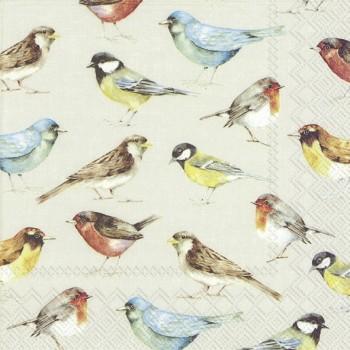 Χαρτοπετσέτα για Decoupage, THE BIRDS cream / L-886060