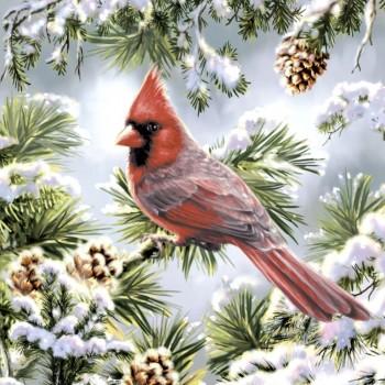 Χριστουγιεννιάτικη Χαρτοπετσέτα για Decoupage, Red cardinal / PD-600303