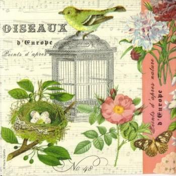 Χαρτοπετσέτα για Decoupage, Oiseaux / 7723