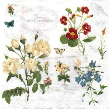 Χαρτοπετσέτα για Decoupage, Naturalism / 414-NATU