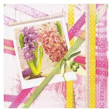 Χαρτοπετσέτα για Decoupage, Hyacinth with Ribbons / 211329