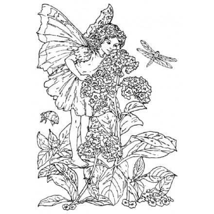 Σφραγίδα Σιλικόνης (10.5 x 7.4cm) - Flower Fairies 01