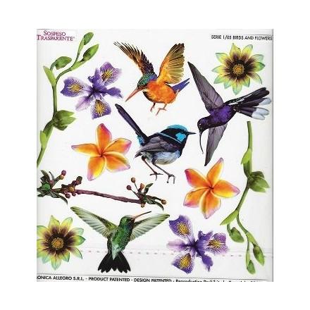 Τυπωμένo φύλλο / Ζελατίνη για Sospeso Trasparente - Birds and Flowers