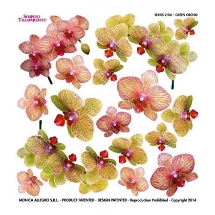 Τυπωμένo φύλλο / Ζελατίνη για Sospeso Trasparente - Green Orchid