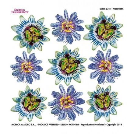 Τυπωμένo φύλλο / Ζελατίνη για Sospeso Trasparente - Passiflora