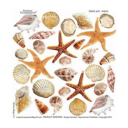 Τυπωμένo φύλλο / Ζελατίνη για Sospeso Trasparente - Shells