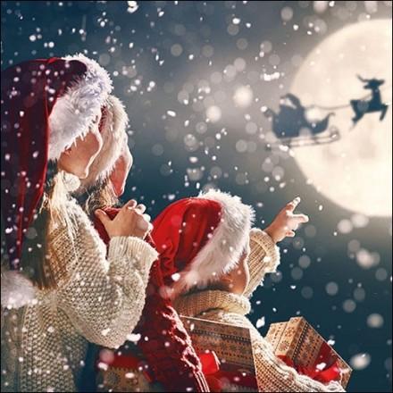 Χριστουγιεννιάτικη Χαρτοπετσέτα για Decoupage, There Is Santa / 33313585