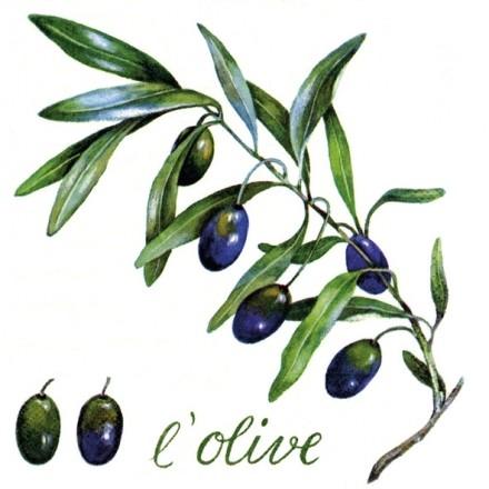 Χαρτοπετσέτα για Decoupage, L'Olive / AT-1210-12015
