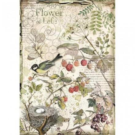 Ριζόχαρτο για Decoupage Stamperia Α4, (Flowers of Life) / DFSA4459