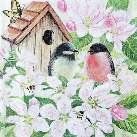 Χαρτοπετσέτα για Decoupage, Birds and Blossom / 211716
