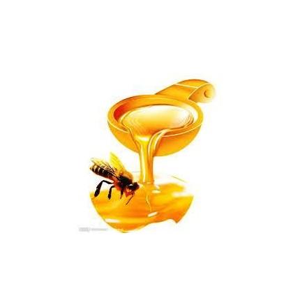 Άρωμα για Σαπούνι και Κερί 50ml - Μέλι (Miel Aromatic)