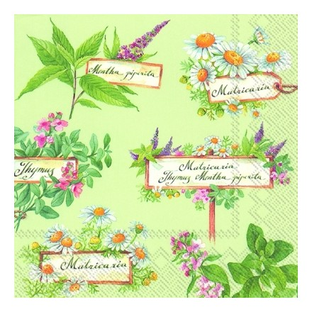 Χαρτοπετσέτα για Decoupage - In the Herb Garden (green)