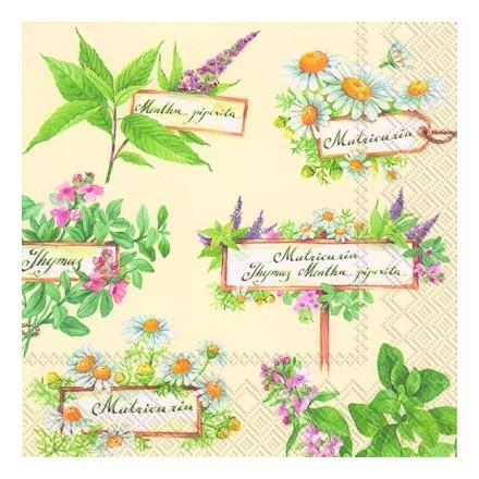 Χαρτοπετσέτα για Decoupage, In the Herb Garden (cream) / L-599960