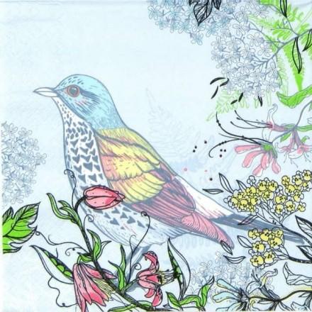 Χαρτοπετσέτα για Decoupage, Forest Bird / SLOG-032401