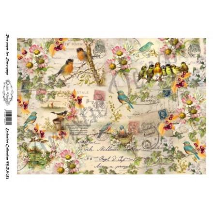 Ριζόχαρτο Aristic Design για Decoupage A4,  vintage birds / MRS282