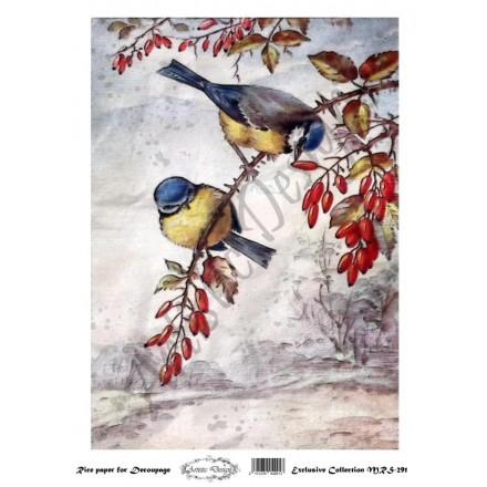 Ριζόχαρτο Aristic Design για Decoupage A4, birds / MRS291
