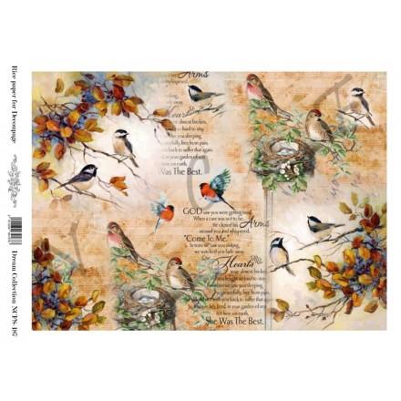 Ριζόχαρτο NCF για Decoupage A4, vintage birds / NCFS187