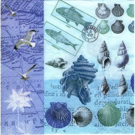 Χαρτοπετσέτα για Decoupage, Antique Shells / NV-74275
