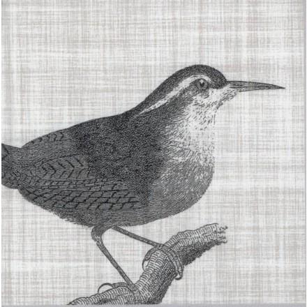 Χαρτοπετσέτα για Decoupage, Botanical Bird / 133-1543