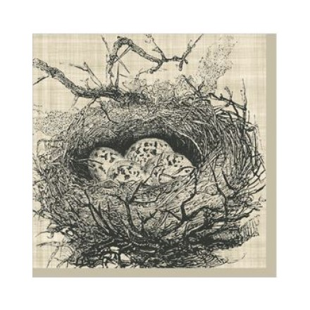 Χαρτοπετσέτα για Decoupage, Botanical Nest 25x25cm / 125-1542