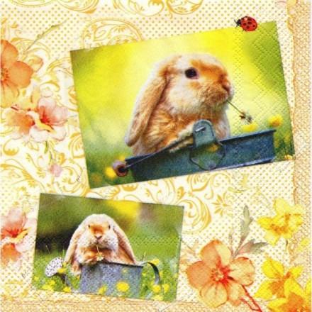 Χαρτοπετσέτα για Decoupage, My Friend Bunny / LU511260